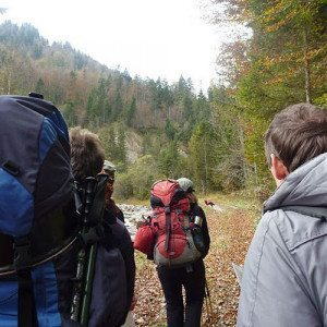 Survival-Workshop Greifenstein Wandern