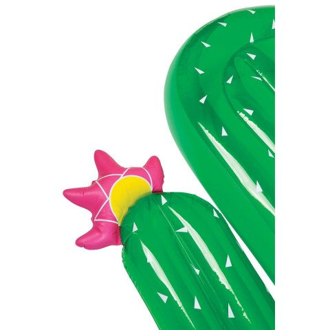 Luxe Lie-On Float - Cactus Close