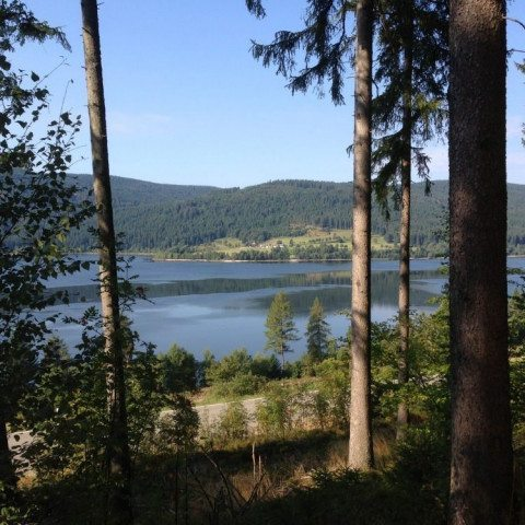 Segway-Panorama-Tour Schluchsee See